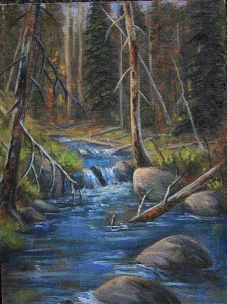 Tom Lucas Creek Study